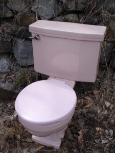 pink-toilet-bowl-1219694-639x852